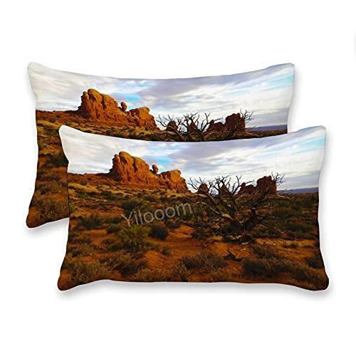 Set di 2 federe rettangolari per cuscini lombari, per letto, divano, divano, auto, deserto, paesaggio rocce