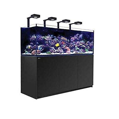 Reefer Red Sea Deluxe XXL Aquarium pour Aquarium Noir 750 l