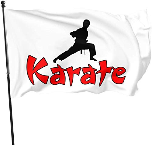 Viplili Flagge/Fahne, Karate Home Garden Yard Flags 3 X 5 Feet Pennants Indoor Outdoor Fall Flags Wall Banners Decoration