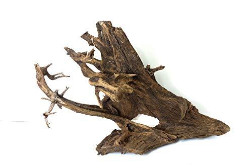 XXL Mangrovenwurzel Nr.9516 Aquarium Wurzel Mangrove Holz Deko Aquascaping Dekoration Landschaft Moos Natur Echtholz