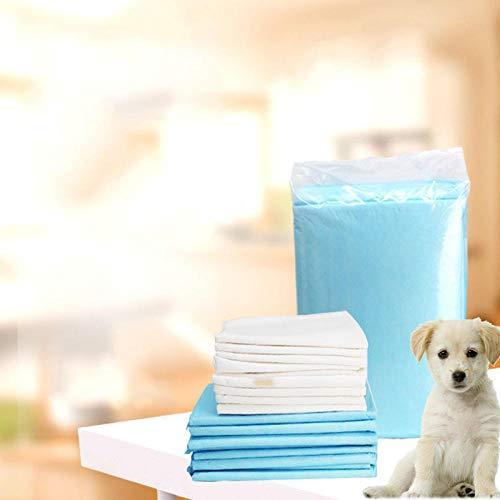 Alfombrilla higiénica de Entrenamiento para Perros,Alfombra Sanitaria para Mascotas Mat-58 * 58cm-40pcs_Diapers,Almohadillas De Entrenamiento De Perro Y Cachorro