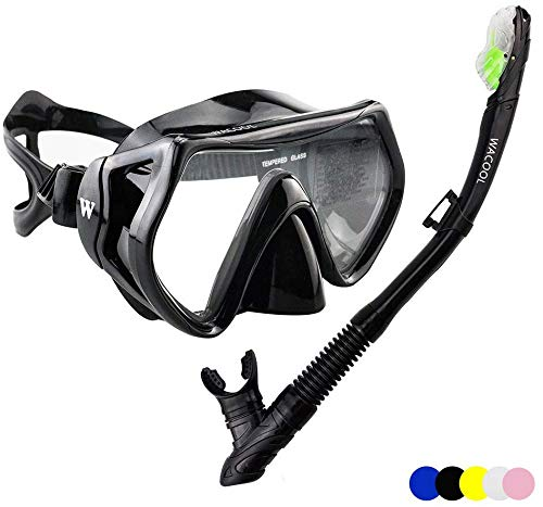 WACOOL Snorkeling Package Set for Adults, Anti-Fog Coated Glass Diving Mask, Snorkel with Silicon Mouth Piece,Purge Valve and Anti-Splash Guard.(Black)