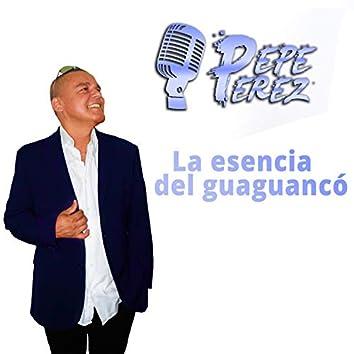 La Esencia Del Guaguancó (Radio Edit)