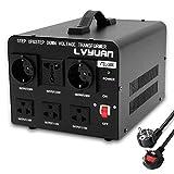 LVYUAN VTEU-3000 110 Volt USA Spannungswandler Ringkern-Transformator 3000VA - In: 110V oder 220V / Out: 110V und 220V