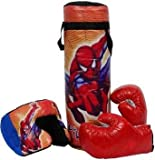 Toysolmanish Boxing Punching Bag KIT for Kids (Multi Color May Vary) Boxing