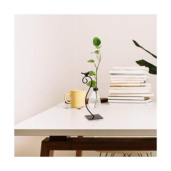 Maceta Decorativa Cristal Sobremesa Jarrón Plantas Hidroponicas Bombilla con Diseño de Ave Soporte de Metal Macetas…