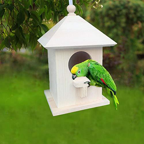 Prom-note Mangeoire pour Oiseaux Sauvages, mangeoire pour Oiseaux imperméable pour l'extérieur, Nettoyage Facile et recharges, avec Corde Suspendue, pour Cour, Jardin et Rebord de fenêtre Enhanced
