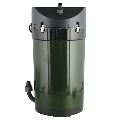 Best Canister Filter For Saltwater Aquarium