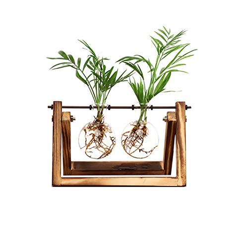 Ivolador Desktop Glass Planter Bulb Plant Terrarium with Retro Solid Wooden Stand and Metal Swivel Holder for Hydroponics Plants Home Garden Wedding Decor (2 Bulb Vase)