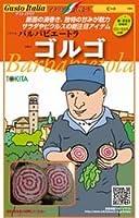 【バルバビエートラ】ゴルゴ 小袋(80粒)(トキタ種苗)