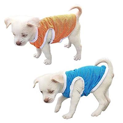 QiCheng & LYS Pet Clothing,Minimalist Dog T-Shirt, lovely little t-shirts, sports T-shirts, 100% cotton, short-sleeved summer clothing (Large, Orange/Blue)