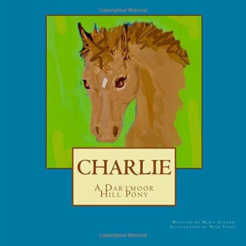 Charlie a Dartmoor Hill Pony