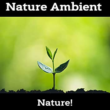 Nature Ambient - Deep Hypnosis