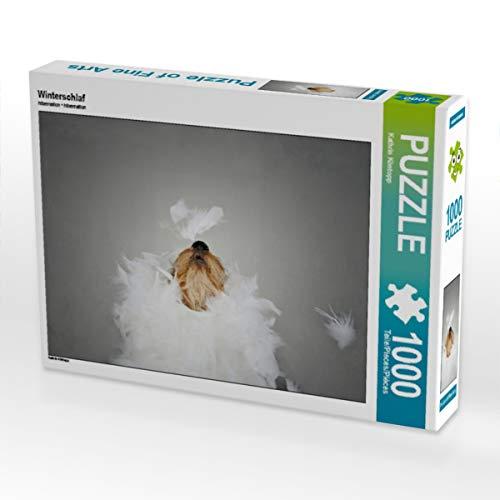 CALVENDO Puzzle Winterschlaf 1000 Teile Lege-Größe 64 x 48 cm Foto-Puzzle Bild von Kathrin Köntopp