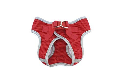 Freedog F010074001 - Arnés Soft, para Perro, Color Rojo: Amazon.es ...