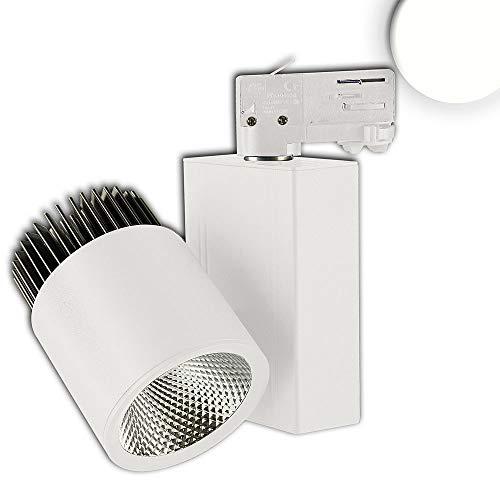 Foco LED de 3 fases (36 W, 38°, 4000 K, CRI82), color blanco mate
