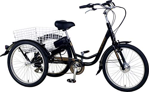 "E-ROCK E Lastenrad ""E-Donkey Plus"" Lastenfahrrad Kindertransport Transport E Bike Elektro"