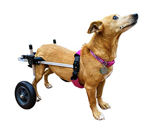 wheelchair carts K9 Carts Dog Wheelchair (Small) - Made in The USA