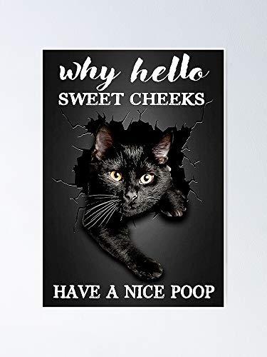 Black Cat Why Hello Sweet Cheeks Have A Nice Coop Poster - Para citas inspiradoras, impresiones de motivación, regalo de mujer, regalo para hombres, arte de pared de oficina, decoración de dormitorio.