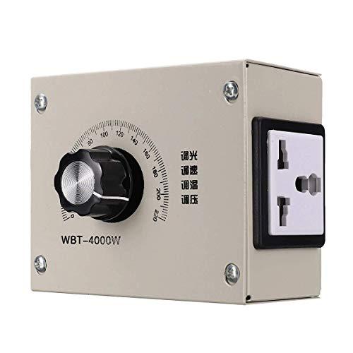 woyaochudan Inversor de Corriente, Onda sinusoidal Pura, Voltaje Ajustable, Velocidad, Temperatura, regulador de atenuación para tat, luz, Ventilador, Motor, atenuador AC 0-220V 4000W