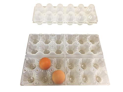 Generico 50 contenitori portauova da 6 Uova in plastica