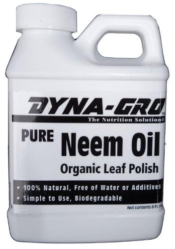 Brussel's Bonsai SP-NO8 8 oz. Neem Oil