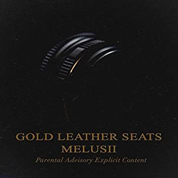 Gold Leather Seats