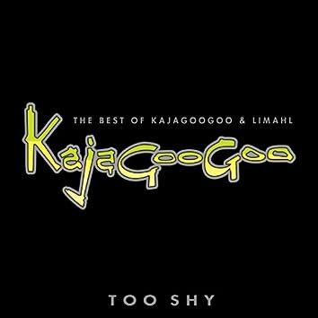 Too Shy: The Best Of Kajagoogoo & Limahl