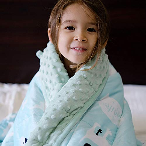 ZonLi Kids Weighted Blanket for Winter (7 lbs, 41''x60'', Dog), Minky Weighted Blanket for Kids,...