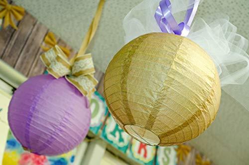Paper Lanterns, Burlap (TCR77228) Photo #4