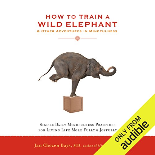 How to Train a Wild Elephant & Other Adventures in Mindfulness audiobook cover art