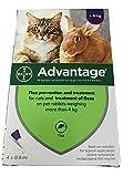 Advantage Spot On Flea Treatment 80 Large Cat and Rabbit 4kg (4 pipettes)