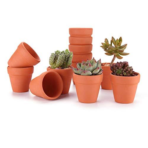 T4U 5cm Terrakotta Sukkulenten Töpfe 12er-Set, Mini Tontöpfe Anzuchttöpfe für Innen- und Außenbereiche