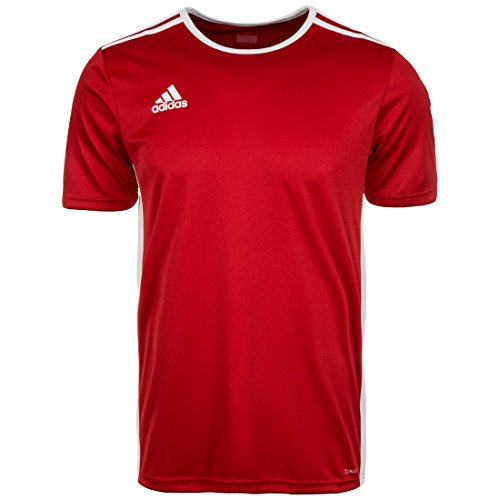 adidas Entrada 18 Jersey Adulto, Maglietta Uomo, Rosso (Power Red/White), XXXL