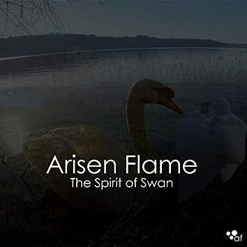 The Spirit of Swan