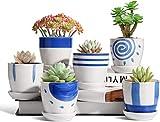 Maceta colgante de cerámica de 8 cm con platillo fijo, juego de 6, macetero de cactus de estilo japonés pequeño redondo bonsái, ideal como regalo para el hogar, la oficina y el jardín