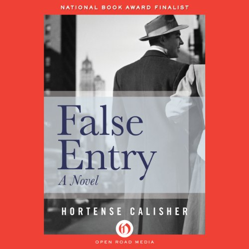False Entry audiobook cover art