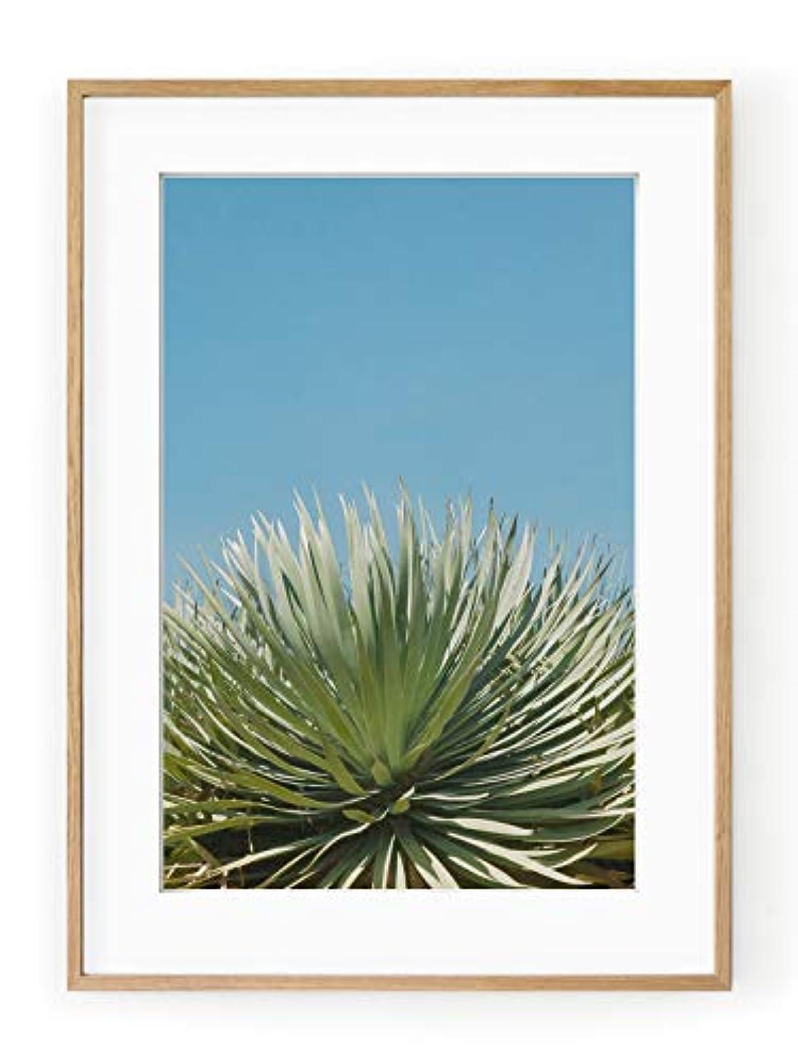 Colors of Senegal 3 Satin Black Aluminium Frame with Mount, Multicolored, 30x40