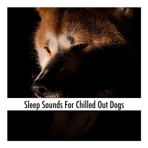 Dog Sleep Music