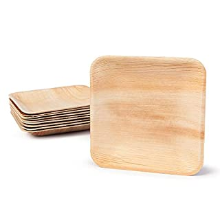 Disposable Plate Set Palm Leaf | Eco Friendly Bio Disposable Plates for Wedding Home Party Catering Serving| Natural Biodegradable (25 Plates) (B082MWNSLL) | Amazon price tracker / tracking, Amazon price history charts, Amazon price watches, Amazon price drop alerts