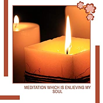 Meditation Which Is Enlieving My Soul