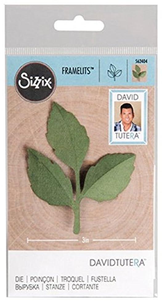 Sizzix Framelits David Tutera Leaf Die 562404 Wedding Party Scrapbooking