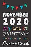 November 2020 my 101 th birthday the one where i was quarantined: birthday gift , quarantine , 101...