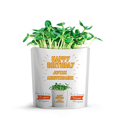 GIFT-A-GREEN Happy Birthday Card | Birthday Greeting Cards With Organic Microgreen Seeds! Like Post Cards, Simply Mail and Recipient Gets to Grow & Eat | Greeting Cards for All Occasions.