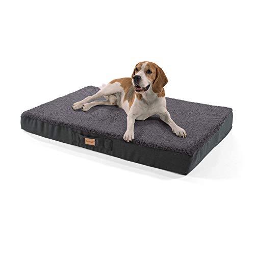 brunolie Balu großes Hundebett in Dunkelgrau, waschbar, orthopädisch und rutschfest, kuscheliges Hundekissen mit atmungsaktivem Memory-Schaum, Größe L (100 x 65 x 10 cm)