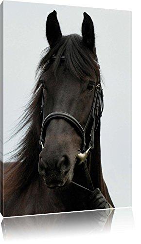 braunes Pferd, Format: 40x60 auf hochkantiges Leinwand, XXL riesige Bilder fertig gerahmt mit Keilrahmen, Kunstdruck auf Wandbild mit Rahmen, günstiger als Gemälde oder Ölbild, kein Poster oder Plakat