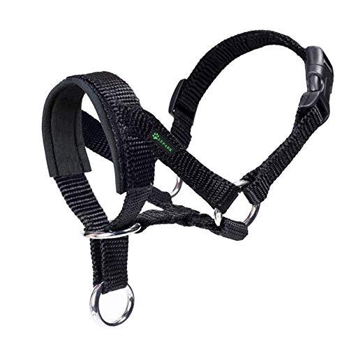 ILEPARK Cuello De Cabeza para Perros con Tela Acolchada, Cabestro de Cabeza para Perros, Regolabile Herramienta de Entrenamiento (M,Negro)