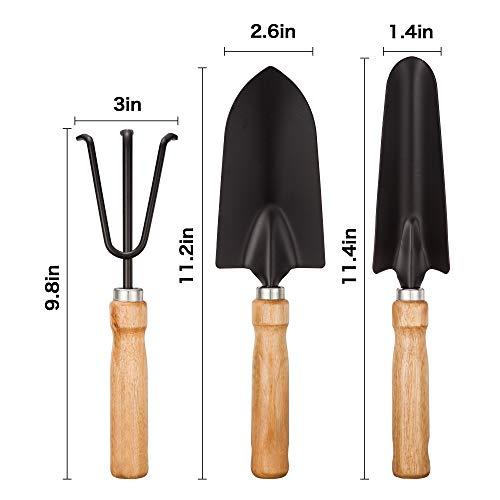 Garden Tool Sets - Wooden Handle Black Metal Gardening Trowels, Cultivator and Trans-Planter - Awesome for Family Use Growing Mini Succulent