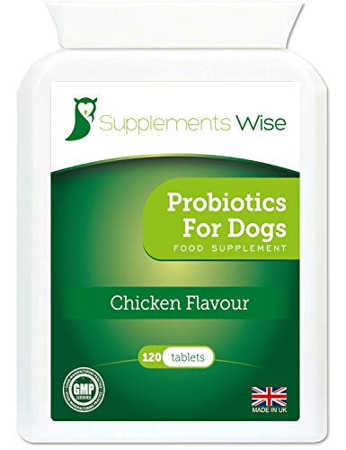 Probiotics For Dogs - 120 Chicken Flavour Tablets - Yeast Infection Treatment - Itchy Skin Relief - Flatulence, Diarrhoea, Wind and IBS Remedy - Probiotic and Prebiotic Support With Digestive Enzymes