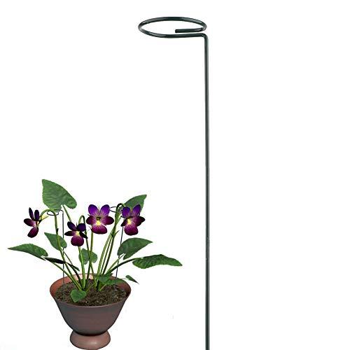 H&S SH 3 Stück Pflanzenstützstäbe für einzelne Pflanzen, Stange mit Stiel und Stange aus Stahl für Amaryllis, Tomaten, Orchidee, Lilie, Pfingstrose, Rose, 40 cm